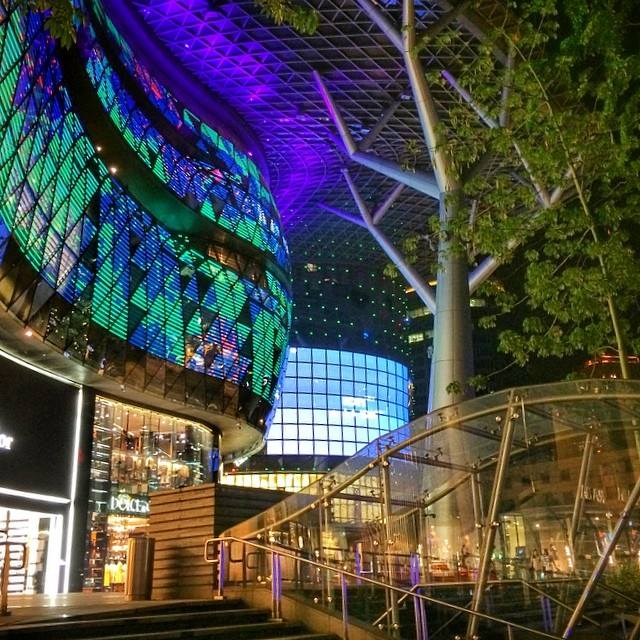 Ảnh: FB ION Orchard